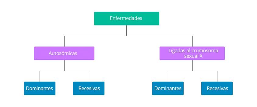 esquema-que-pasa-recetas01.es