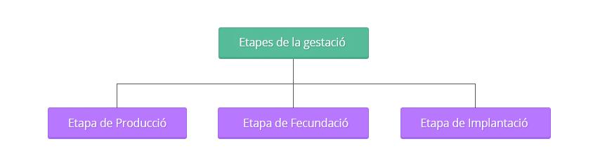 esquema-tecnicas-reproduccion01.ca
